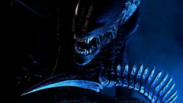 Focus On: The Alien Films | TakeOneCinema.net